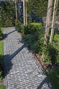 Landscape Architecture, Landscape Design, Garden Design, Clay Pavers, Garden Pavers, Pergola, Patio Roof, Back Gardens, Pavement