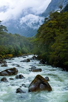 South Island, New Zealand by eyenew on Flickr