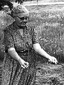 dowsing water witching - Google Search