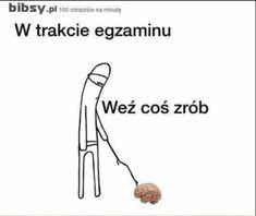 Wtf Funny, Funny Cute, Funny Jokes, Hilarious, Funny Lyrics, Polish Memes, Dark Sense Of Humor, Science Notes, Aesthetic Memes