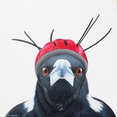 Portrait of magpie wearing helmet with cable ties. Photo reference from The Magpie Whisperer. Artwork by Nicole Grimm-Hewitt Australian Animals, Australian Artists, Emoji Images, Crazy Bird, Funny Birds, Bird Illustration, Bird Drawings, Aboriginal Art, Magpie