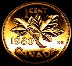 1980 Canada One Cent SPECIMEN PENNY in AMAZING SHAPE! A Gem!