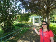 Parque Villa Lobos Em Foco