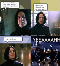 HP and CSI crossover, hehehe! Snape Harry Potter, Harry Potter Memes, Slytherin Pride, Hogwarts, Dark Lord Potter, Cool Books, Fantastic Beasts, Lol, Funny Things