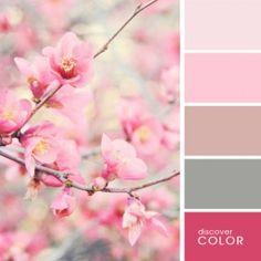 Sakura   Discover Color Palette