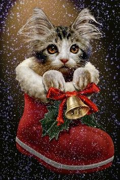 Christmas for Puss in Boots. Have a merry cat Christmas. Christmas Scenes, Christmas Pictures, Winter Christmas, Christmas Time, Merry Christmas, Xmas, Christmas Thoughts, Christmas Sock, Christmas Stocking
