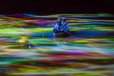 teamlab has added more than a dozen, deeply-immersive digital installations to mifuneyama rakuen park — a meter garden and forest in japan. Light Art Installation, Street Installation, Art Installations, Japan Places To Visit, Japanese Landscape, Koi Carp, Visual Display, Animation, Land Art