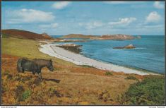 Great Bay, St Martin's, Isles of Scilly, c.1975 - Gibson Postcard