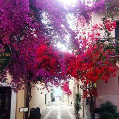 Η πολύχρωμη Ελληνική πόλη που κάθε Άνοιξη θυμίζει πίνακα ζωγραφικής! Κάθε σοκάκι και ένα καινούργιο έργο τέχνης!
