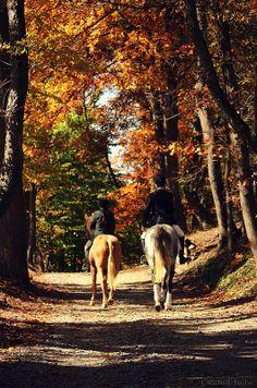 Autumn riders