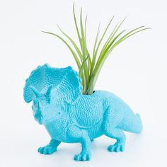 Blue Dinosaur Planter with Air Plant, Etsy $20