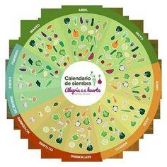 @alejandro shammah: Calendario de siembra para España