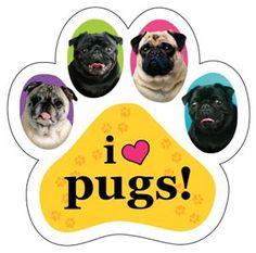 It's true, I love Pugs!!!