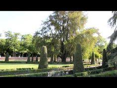 El Ahuehuete del Retiro. Árbol singular de la Comunidad de Madrid.