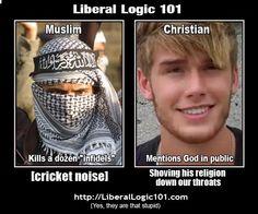 Liberal IDIOT logic 101
