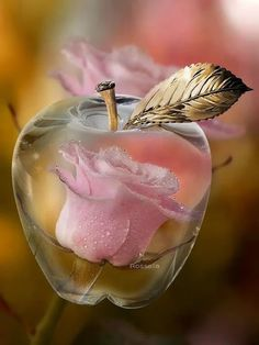 A clear apple w/ a PINK rose inside, absolutely beautiful!