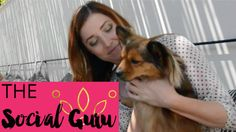 An exclusive on-camera interview with Rachael King, Head of Communications for the dog sitting startup DogVacay (July 2015)