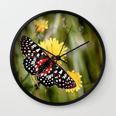 A Red Dotted Checkerspot Wall Clock by Vikki Salmela, #butterfly #black #white on #flowers #photographic #art on #home #decor #wall #clocks for #kitchen #bedroom or special #mothers day #gift.