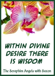 Within Divine desire there is wisdom and understanding. Within Divine passion there is strength and vision. The Seraphim Angels