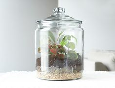 15 Handmade Wedding Gifts   Home Made Simple---THIS WOULD BE A  PARTICULARLY GREAT WAY TO CAPTURE A STARTER OF THE COUPLE'S FAVORITE PLANT(S), OR FLOWERS!