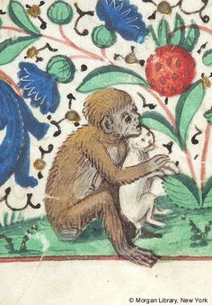 Monkey, seated on ground holding cat | Book of Hours | Belgium, possibly Brussels | ca. 1475 | The Morgan Library & Museum