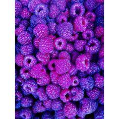Purple Fruit - Pantone Color of Year Purple Purple Walls, Purple Haze, Shades Of Purple, Deep Purple, Pink Purple, Purple Sunset, Purple Party, Purple Flowers, Magenta