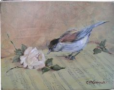 Ready to Hang Print - Bird on Music - POSTAGE is included in the price Australia wide