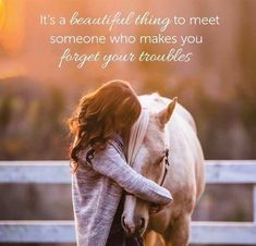 Funny Horse Memes, Funny Horses, Cute Horses, Pretty Horses, Beautiful Horses, Rodeo Quotes, Equine Quotes, Equestrian Quotes, Racing Quotes