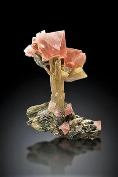 Fluorite on Quartz with Ilvaite from the Huang Gang Mine Complex, Inner Mongolia Autonomous Region, China; This piece was formerly in the collection of Professor Stephen Smale. Minerals And Gemstones, Rocks And Minerals, Natural Gemstones, Cool Rocks, Beautiful Rocks, Crystal Magic, Mineral Stone, Rocks And Gems, Stones And Crystals