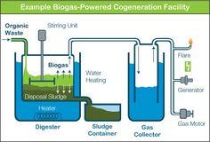 Biogas cogeneration renewable energy solution