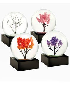 Set of four miniature desk snow globes demonstrates the beauty of natural change with a separate scene for each of the four seasons.