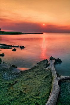 green mud and sunrise fires by anj_p, via Flickr; Lake Michigan, Sheboygan, Wisconsin