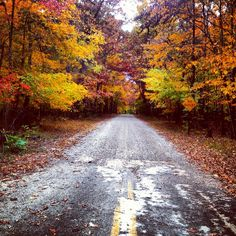 Sewanee Road in the Fall