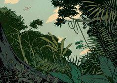 Amazonia: Two planes collide over the Amazon