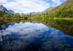 Jonkershoek Nature Reserve in Stellenbosch, Western Cape. The beautiful Jonkershoek Nature Reserve lies in the Jonkershoek Valley just above . Victoria House, Self Catering Cottages, Holiday Apartments, Game Reserve, Luxury Accommodation, Nature Reserve, Hotel Spa, Travel Guide, Westerns
