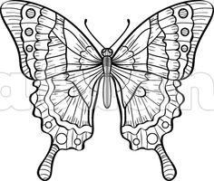 Motýl - XS - Katuan's
