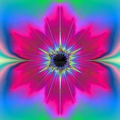 fractal floral design #pink