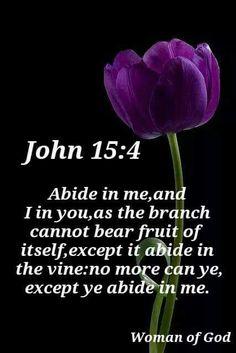John 15:4 KJV