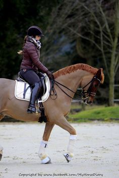 133304c7dd7 36 Best Equestrian Style images in 2019