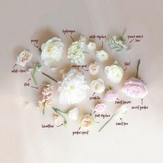 Bouquet Breakdown by Blushing Rose Floral Neutral Wedding Flowers, Floral Wedding, Wedding Bouquets, Backyard Wedding Decorations, Flower Meanings, Flower Food, Wedding Flower Inspiration, Blush Roses, Types Of Flowers