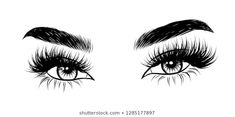 Images, photos et images vectorielles de stock de Hand-drawn woman's sexy makeup look with perfectly perfectly shaped eyebrows and extra full lashes. Idea for business visit card, typography vector.Perfect salon look similaires – 776749792 Full Eyebrows, Natural Eyebrows, Sexy Make-up, Eyelash Logo, Eyelash Case, Makeup Drawing, Lashes Logo, Creative Makeup Looks, Illustration