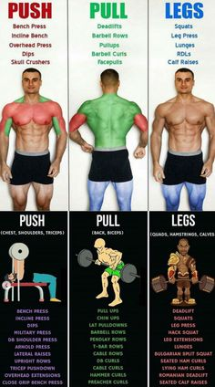 Push/Pull/Legs Weight Training Workout Schedule For 7 Days The variability and diversity of Push-Pull training is one of the reasons it is so popular. By using this method you can give adequate rest time. Gym Workout Chart, Gym Workout Tips, Weight Training Workouts, Workout Schedule, At Home Workouts, Push Pull Workout Routine, Push Pull Legs Workout, Push Workout, Lifting Workouts