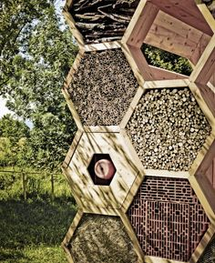 Hexagonal Bee Hotel Aims to Boost Declining Wild Bee Populations : TreeHugger