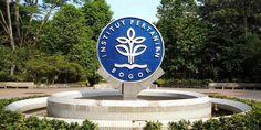 Edupost.id – IPB berhasil meraih posisi peningkatan dalam QS Asian University Ranking menjadi peringkat 191. Peringkat ini naik cukup tajam dari sebelumnya yaitu di posisi 201-220 di Asia. berbagai…