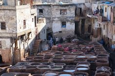Fez Morocco. The tannery in Fez. It is a must see. Full of history and culture.      www.exoticnomadictravel.com