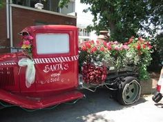 This Model T Ford has outlived many of its peers, and is still going strong, if only as a flower garden.