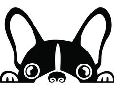 The Boston Terrier breed originated in Boston and is one of the few breeds that are native to the U. In the an inter-mixing of English Bulldogs Boston Terriers, Boston Terrier Love, Yorkshire Terrier Puppies, Terrier Dogs, Boston Terrier Tattoo, Yorkie Puppies, Bulldog Puppies, Funny Cute Cats, Diy Funny