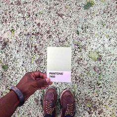 Pantone Project: Colori Pantone nella Vita Reale di Paul Octavious PANTONE 7493