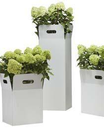 Blumenkübel 'Box' - ein super moderner, ausgefallener quadratischer Blumenkübel aus weiß beschichtetem Metall, den man schön mit hohen Pflanzen wie z.B. Rispenhortensien bepflanzen kann - für Balkon, Terasse und Garten.