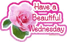 Wednesday Morning Quotes and Wednesday Gif animations. We have created beautiful Happy Wednesday Gif images and awesome good morning quotes for you. Happy Wednesday Pictures, Wednesday Morning Quotes, Hump Day Quotes, Wednesday Hump Day, Wednesday Greetings, Wednesday Memes, Wednesday Wishes, Happy Quotes, Wednesday Sayings